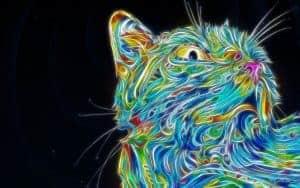 colorful-cat-art-matei-apostolescu-psychedelic-fractalius-1920x1200 (1)