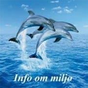 info-om-miljoe